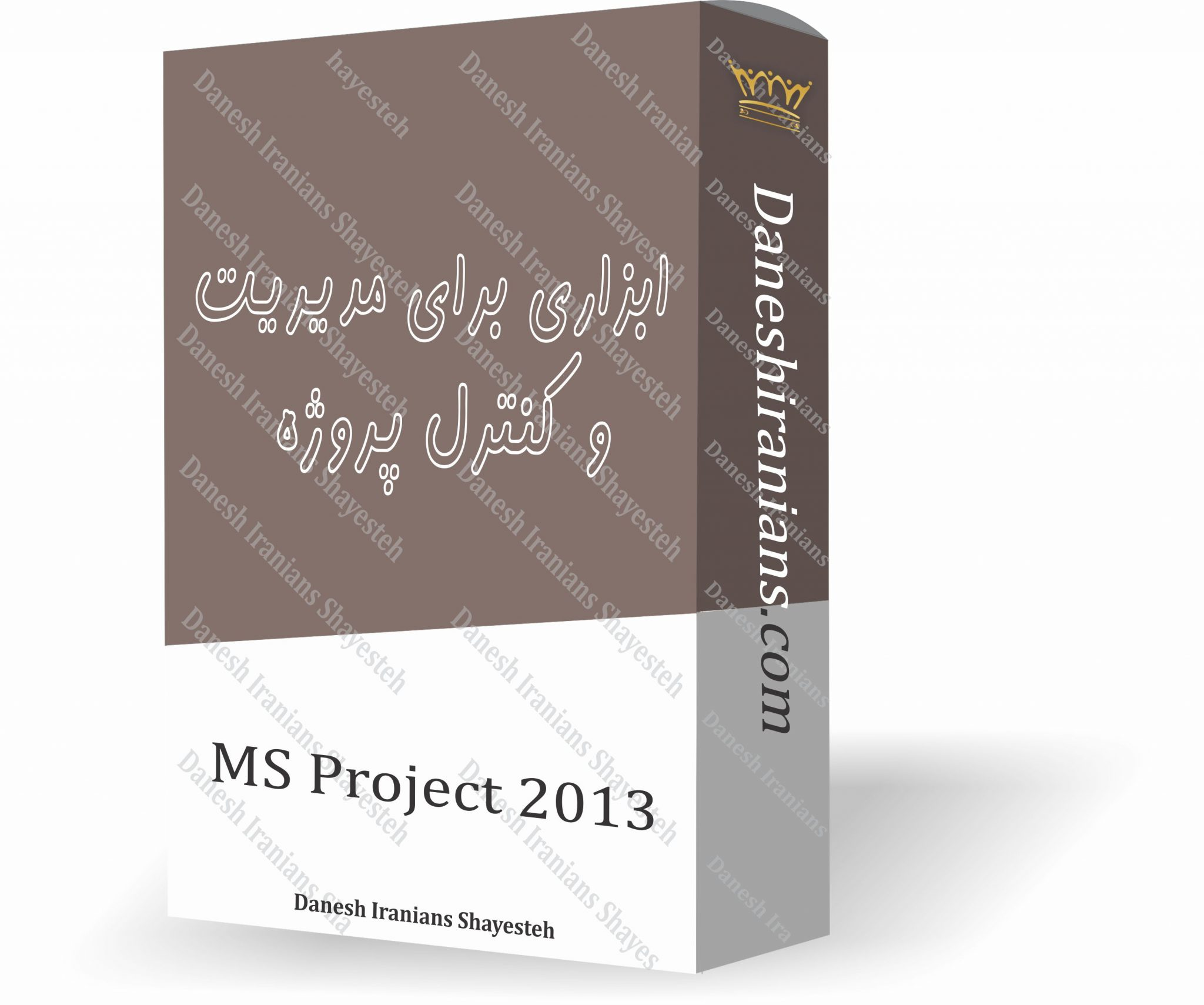 MS Project 2013